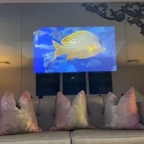 Аквариум в зеркале, которое телевизор, который в квартире
